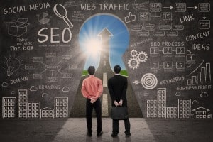 search engine optimization is